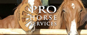 Professional Horse Services